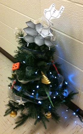 2009 Scott Lab Christmas Tree