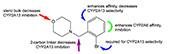 Benzylmorpholine analogs as selective inhibitors of lung cytochrome P450 2A13 for the chemoprevention of lung cancer in tobacco users